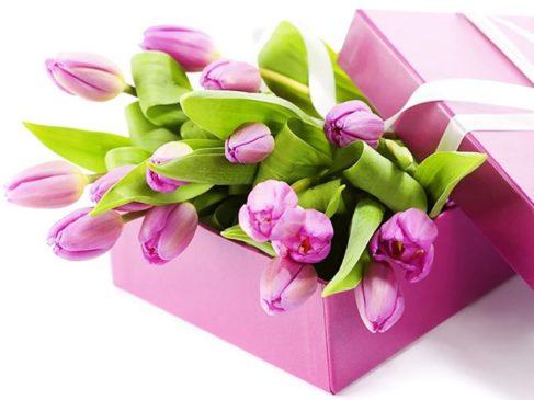 Поздравляем милых женщин с праздником весны!
