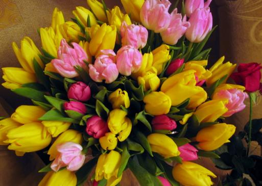 Милые девушки, с праздником весны Вас!