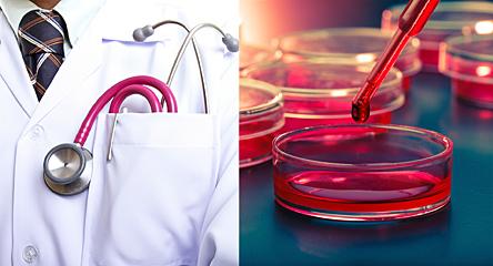 Питание и здоровье. В каких ситуациях обращаться к диетологу?