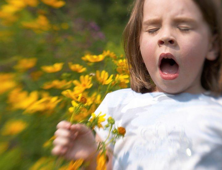 Анализ крови на аллергены. Как пережить сезонную аллергию?