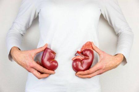 Що потрібно знати про нирки?