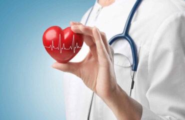 Консультация кардиолога, ЭКГ, УЗИ сердца. Кому нужно летом?